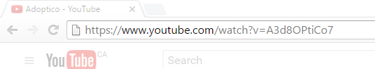 Address bar of the browser